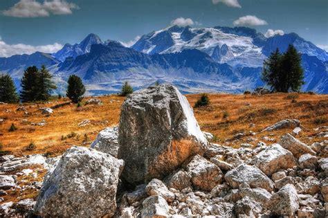 imagen gratis arbol montana campo paisaje piedra hierba