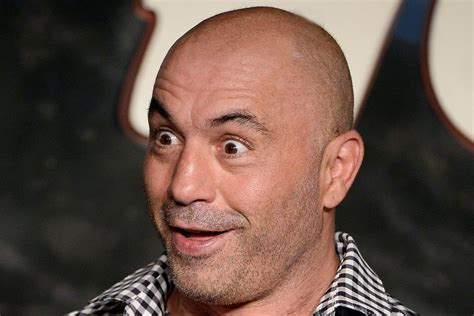 petition   joe rogan moderate  presidential