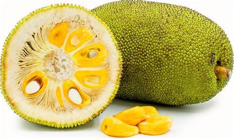 jack fruit ideas  pinterest jackfruit recipes