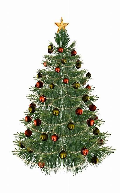 Tree Christmas Mmd Dl Deviantart Web Favourites