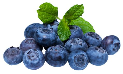 what color are blueberries blueberries png