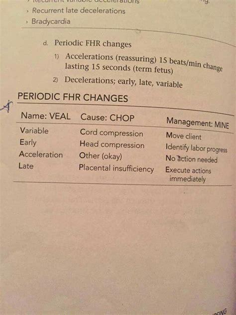 veal chop veal chop nursing nursing study nursing notes