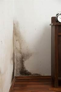 Schimmel An Der Wand : schimmel an der wand werden sie den schimmel los ~ Frokenaadalensverden.com Haus und Dekorationen