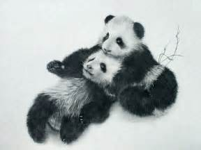 Realistic Animal Drawings Panda