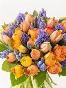 Synonyme De Parfait : les fleurs la meilleure d coration maison au printemps ~ Maxctalentgroup.com Avis de Voitures