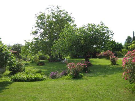 separè giardino il giardino con le e il grande albero di fichi il