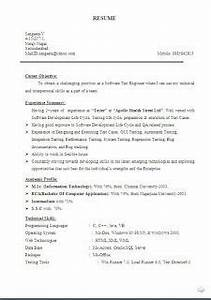 career objective for resume for experienced software engineers storekeeper resume format sample template example