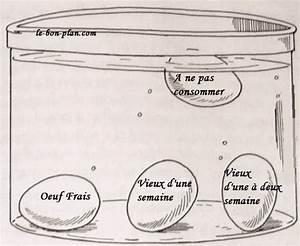 Comment Reconnaitre Des Oeufs Frais : comment savoir qu un oeuf est encore bon ~ Louise-bijoux.com Idées de Décoration