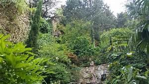le jardin d39eden picture of le jardin d39eden tournon With jardin eden