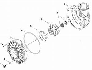 Waterway Viper Pump Parts Diagram