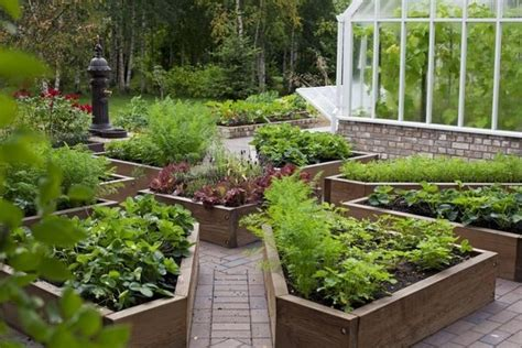 diy raised beds in the vegetable garden ideas and materials