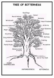 Prophetic Fire  The Tree Of Bitterness With Diagram
