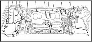 Engine Compartment Overview    Checking Things Under The