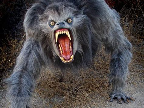 big scary dog beast picture page   creatures