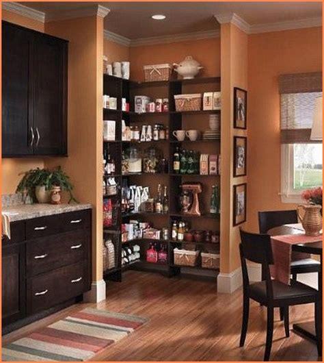 Blind Corner Kitchen Cabinet Ideas by Tall Corner Pantry Cabinet Home Design Ideas