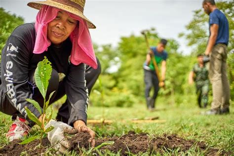 Newly Passed Philippine Law Requires Students To Plant