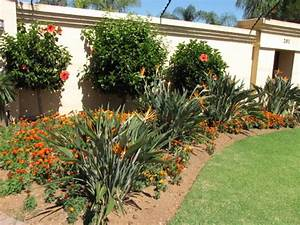 Do it yourself landscaping your guide to great for Do it yourself landscaping ideas