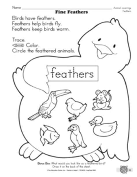results for animal adaptations kindergarten guest the