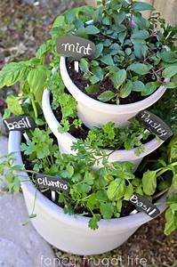 Outdoor herb garden ideas the idea room for Outdoor herb garden
