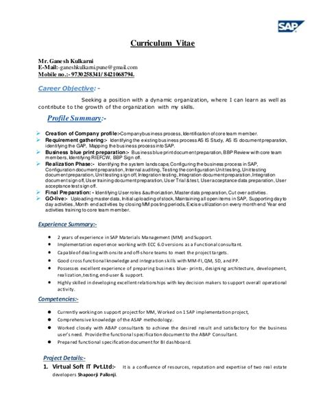sle resume for it professional with 2 years experience