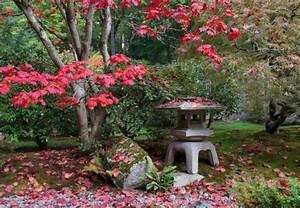 asiatischen garten anlegen obi erklart wie es geht With garten planen mit gardena balkon bewässerungssystem