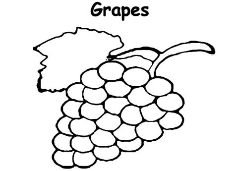 Coloring Grapes by Green Grapes Coloring Coloring Pages