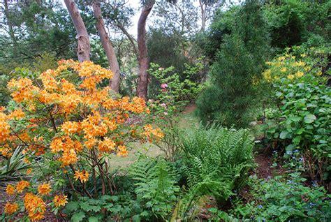 plant world gardens  nursery