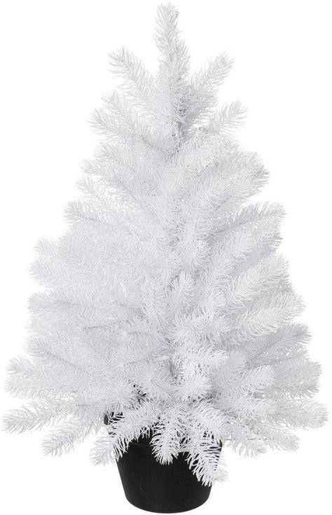 tannenbaum im topf kaufen tannenbaum im topf kaufen otto