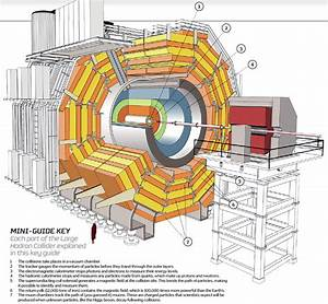 Cern U2019s Pentaquark  The Large Hadron Collider Continues To Amaze The Science World