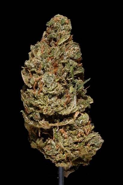 Weed Spinning Marijuana Gifs Before Ve Cannabis