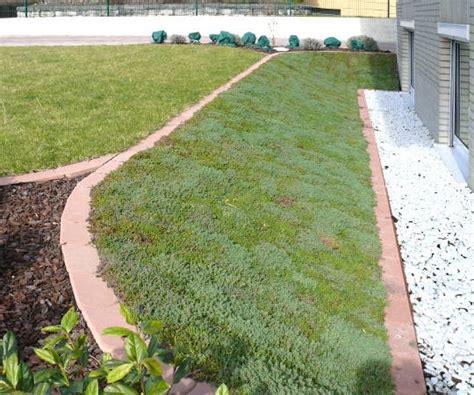 Bodendecker Am Hang by Gartengestaltung Wieneke Uslar Referenzen Blumen Und