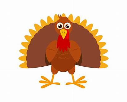 Turkey Clipart Turkeys Vector Cartoon Background Bird