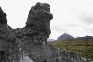 Alpine Fault Tours Exposed  Whataroa