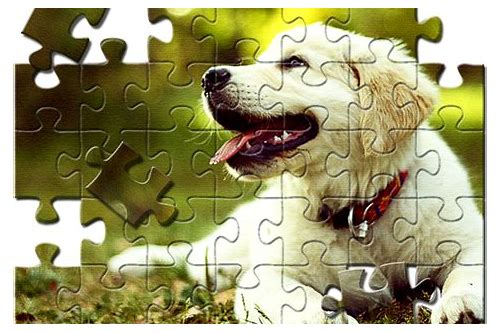 puzzle filter photoshop cs6 download