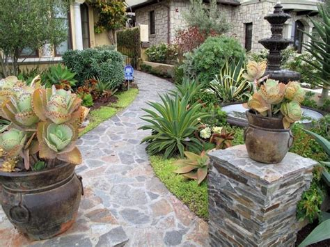 succulent front yard design front yard landscaping ideas succulents fres hoom