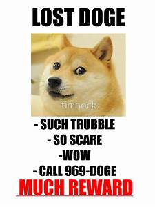 Original Doge Meme 28 Images Funny Craving That Mineral Google Search Hahaha Lost