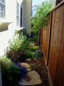 choice of plants and plant placement for side yard or