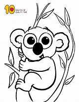 Koala Coloring Pages Animal Animals Sheet Number A4 Pdf Dolphin sketch template