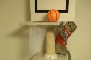 basketball cat バスケをする猫達 ダンクとゴールを決める cats basket get a goal