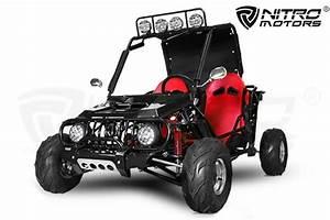 Kart Mit Straßenzulassung : nitro kinder buggy 125cc lifan 4 takt 3 gang rg ~ Kayakingforconservation.com Haus und Dekorationen