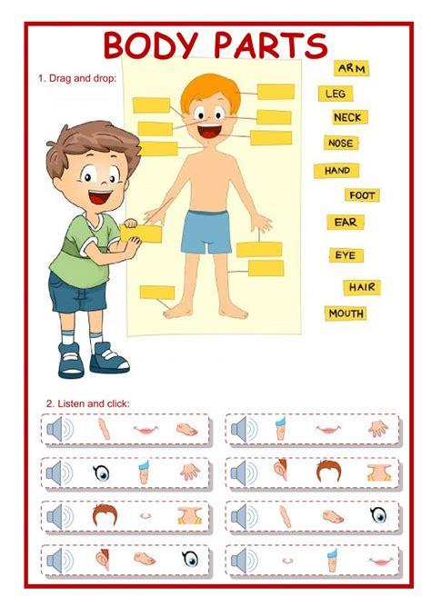 body parts interactive worksheet