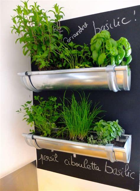 herbes aromatiques cuisine petit jardin de goutière cuisine jardins
