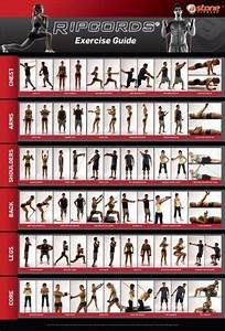Ripcords Exercise Guide Poster