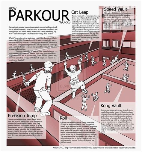 How To Do Parkour In Your Backyard by Beginner Tips And Terms Parkour Parkour And Martial