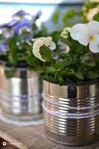 Was Kann Man Im August Noch Pflanzen : diy blument pfe aus konservendosen ~ Lizthompson.info Haus und Dekorationen