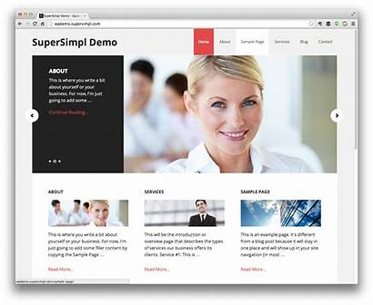 Professional Website Demo Wordpress