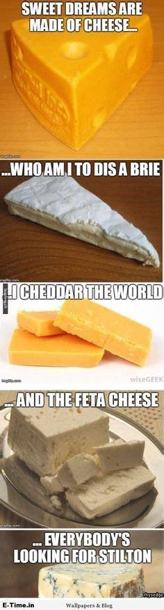 best 25 cheese meme ideas on a pun sandwich