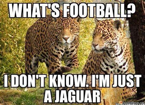 Jaguars Memes - jaguars meme