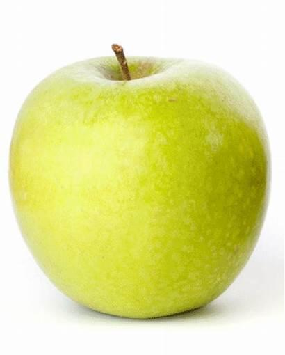 Apples Moldy Apple Lemon Decaying Science Juice
