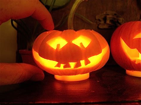pumpkin faces for to carve miniature pumpkin carving fast and fun the mini garden guru from twogreenthumbs com